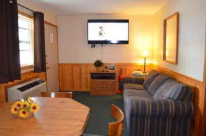 This is a 2 bedroom 2 bathroom economy apartment for rent on Indian Point in Branson