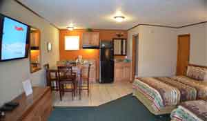 Extended stay studio apartment with 2 queen beds and full kitchen. Can adjoin with next room over for groups of up to 8 people