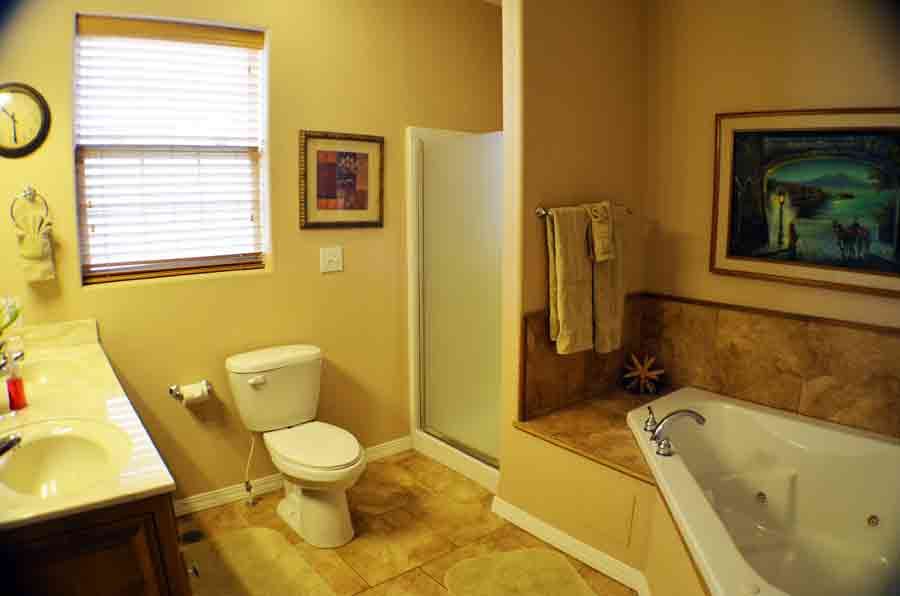 Master-bathroom-with-jacuzzi-tub-and-standup-shower
